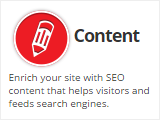 SEO-WEBSITE-CONTENT-HOUSTON