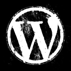 website design Houston - wordpress