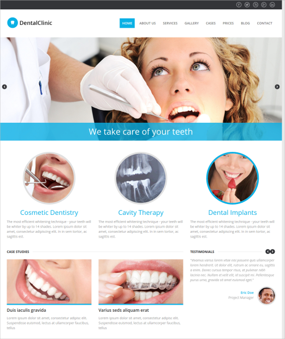 Website Design Copperfield Dentist SEO Web Design Houston