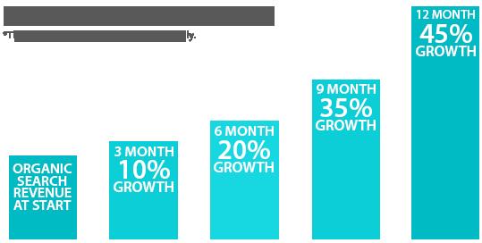 SEO Houston Growth Chart