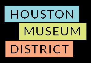SEO Consultant Houston Museum District