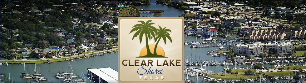SEO Consultant Clear Lake